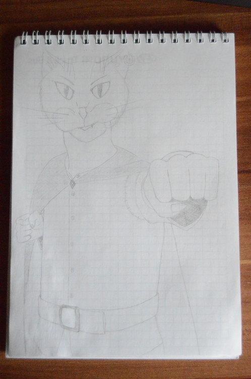 Рисунки Занна