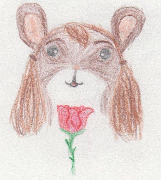 Поздняя Роза